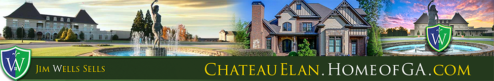 Chateau Elan Homes for Sake Header