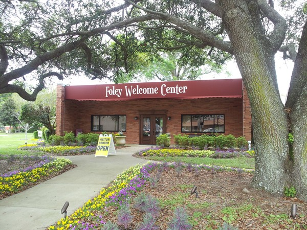 homes for sale in foley alabama 36535