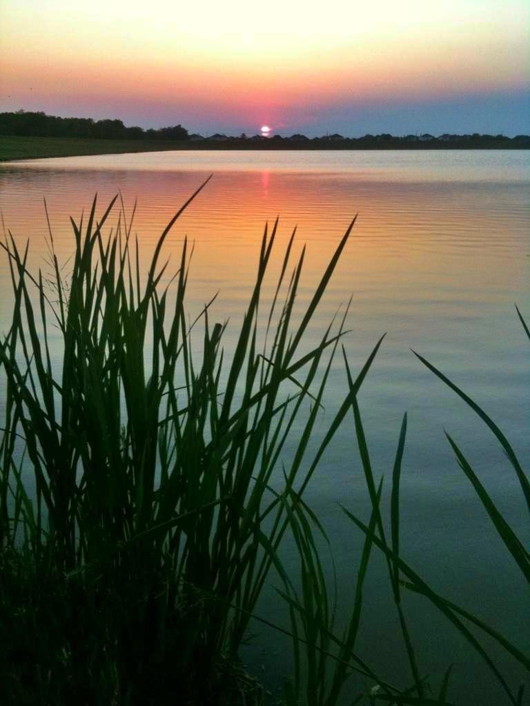 Audubon Place Sunset
