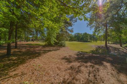 323 Greypine Golf View