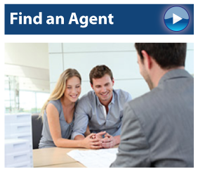 View Our Agents