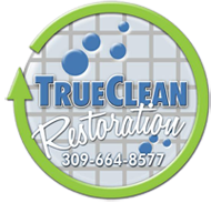 True Clean Logo