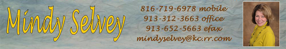 Mindy Selvey Real Estate - REMAX State Line