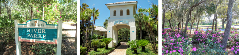 Ocean Palms at St Augustine