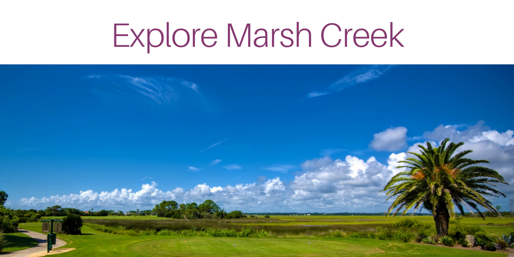 Explore Marsh Crekk