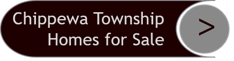 Chippewa Township Homes for Sale
