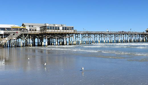A tall pier above the ocean with a restaurant and seagulls on the beach below it