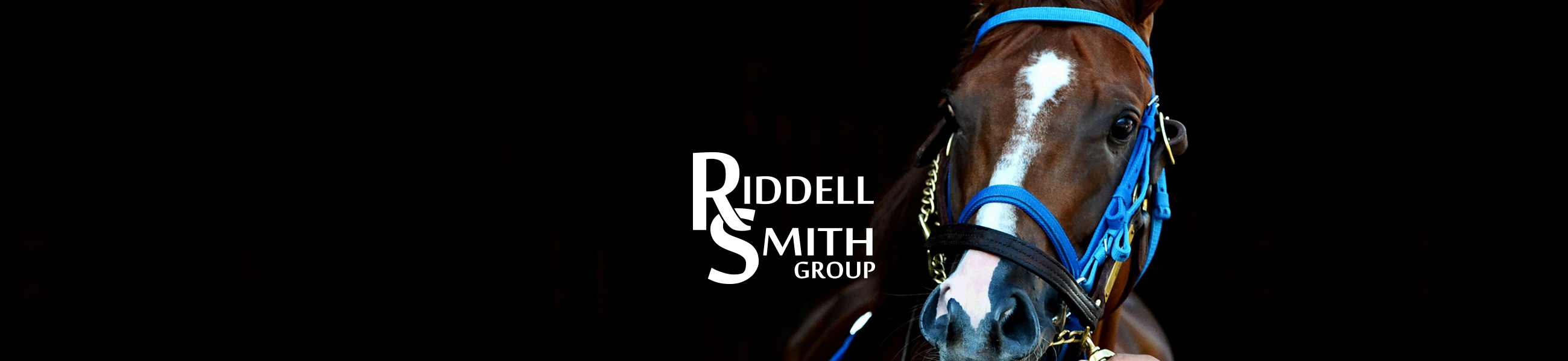 Horse Farms in Kentucky - Raising Racehorses - Riddell Smith Group