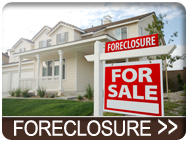 Real Estate Florida Group Foreclosure Search