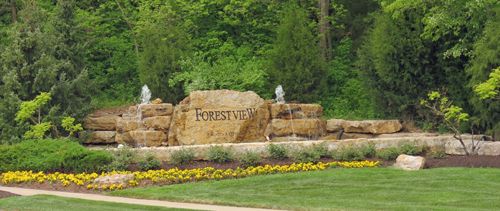 Forest View -- Homes for Sale in Olathe