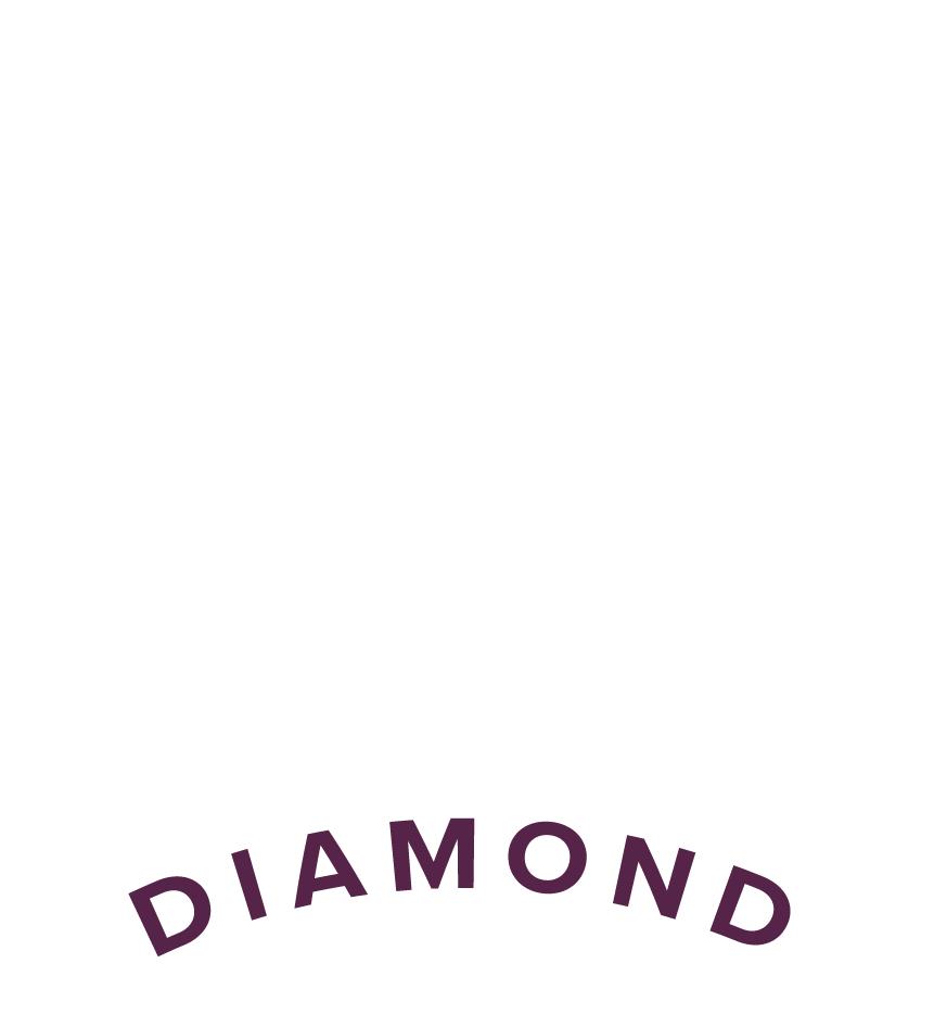White_Logo_Chairman's Circle Diamond Award