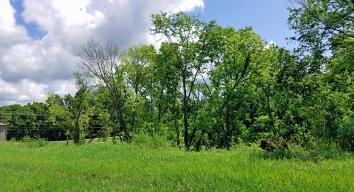 More Villas to Come in Arbor Ridge