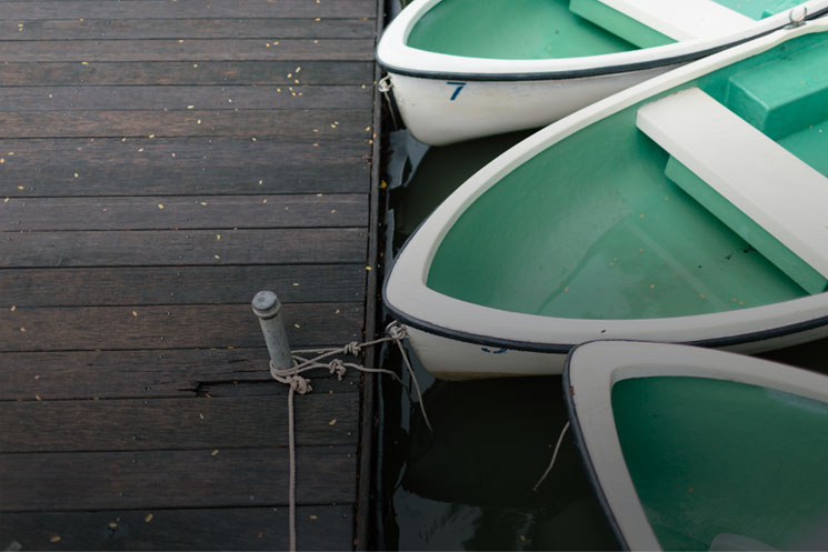 Row boats attached to a dock