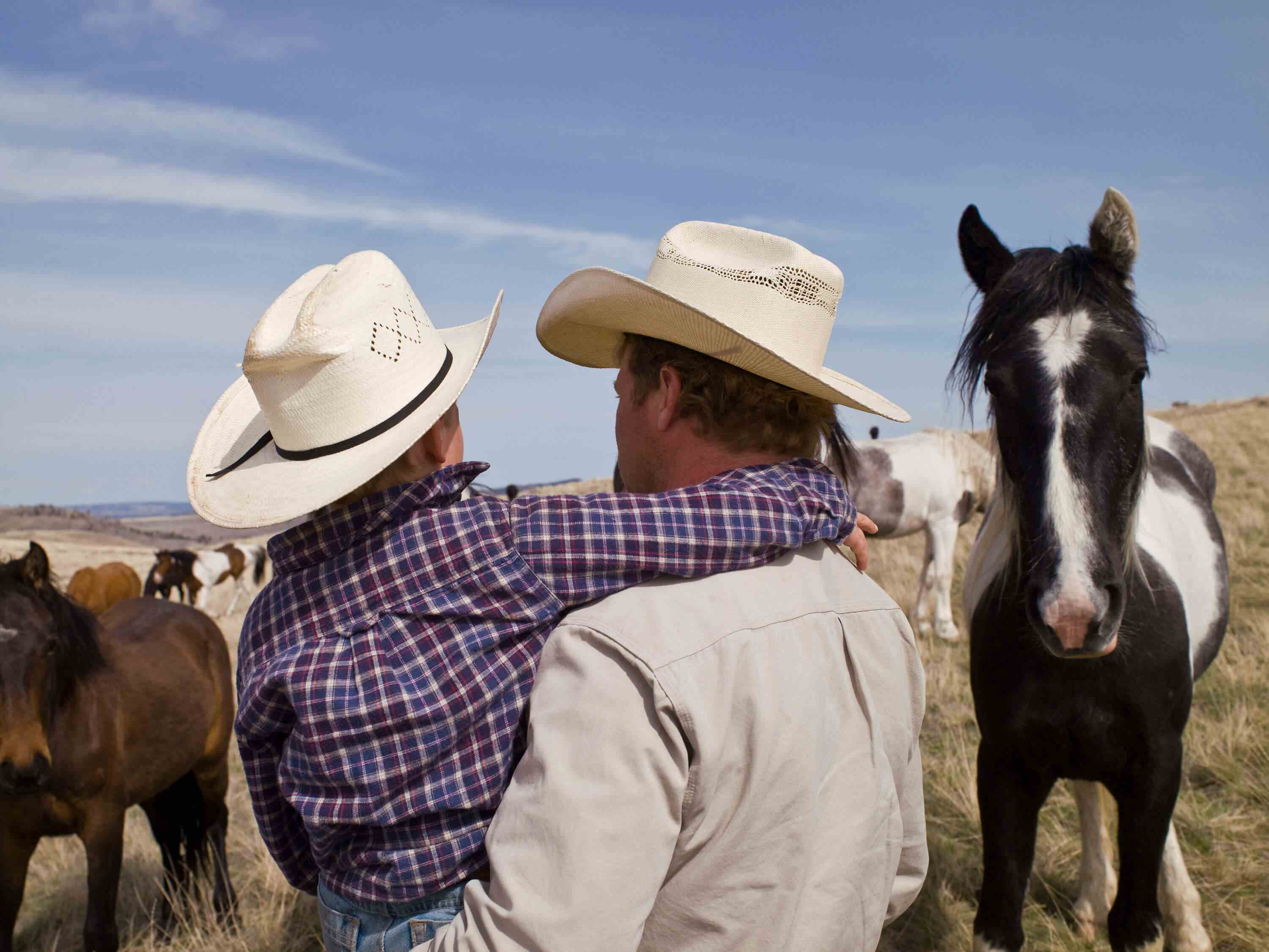 Back of man holding boy in cowboy hats with horses