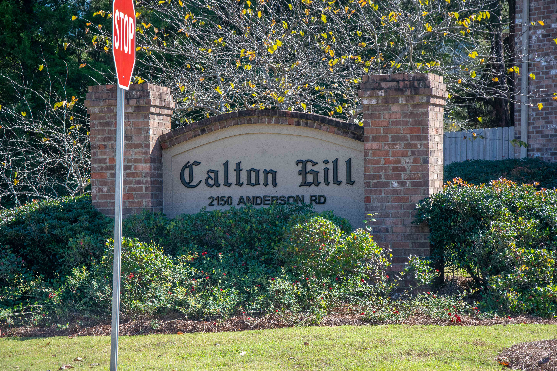 CaltonHill2.jpg