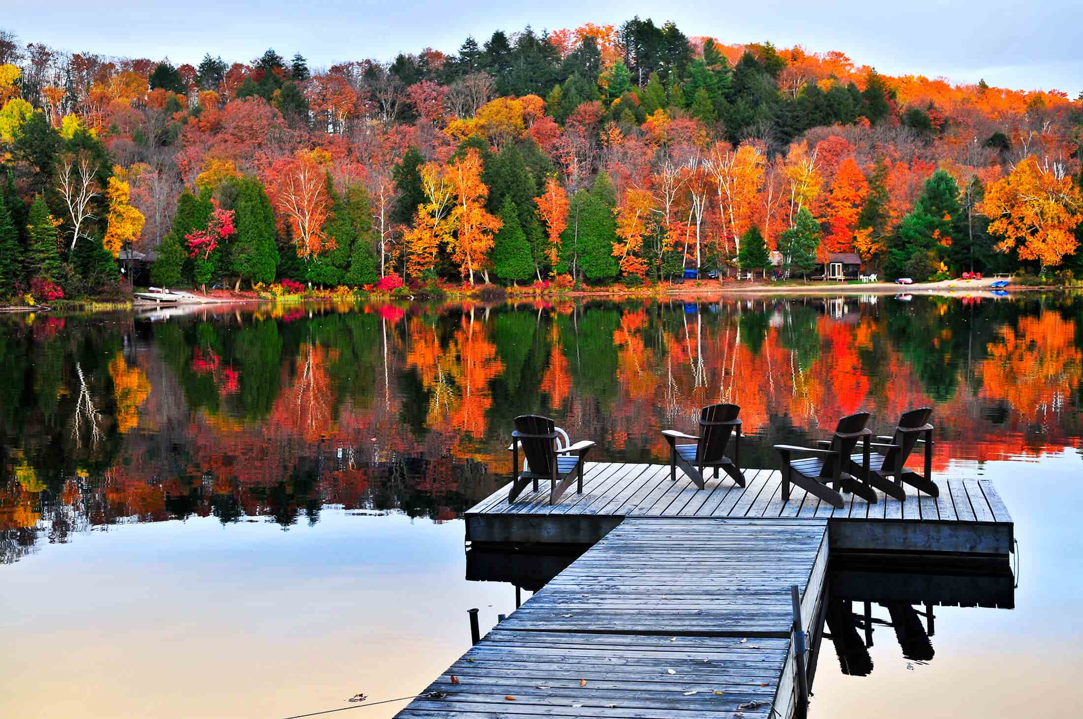Holiday Fall colors trees background lake with dock