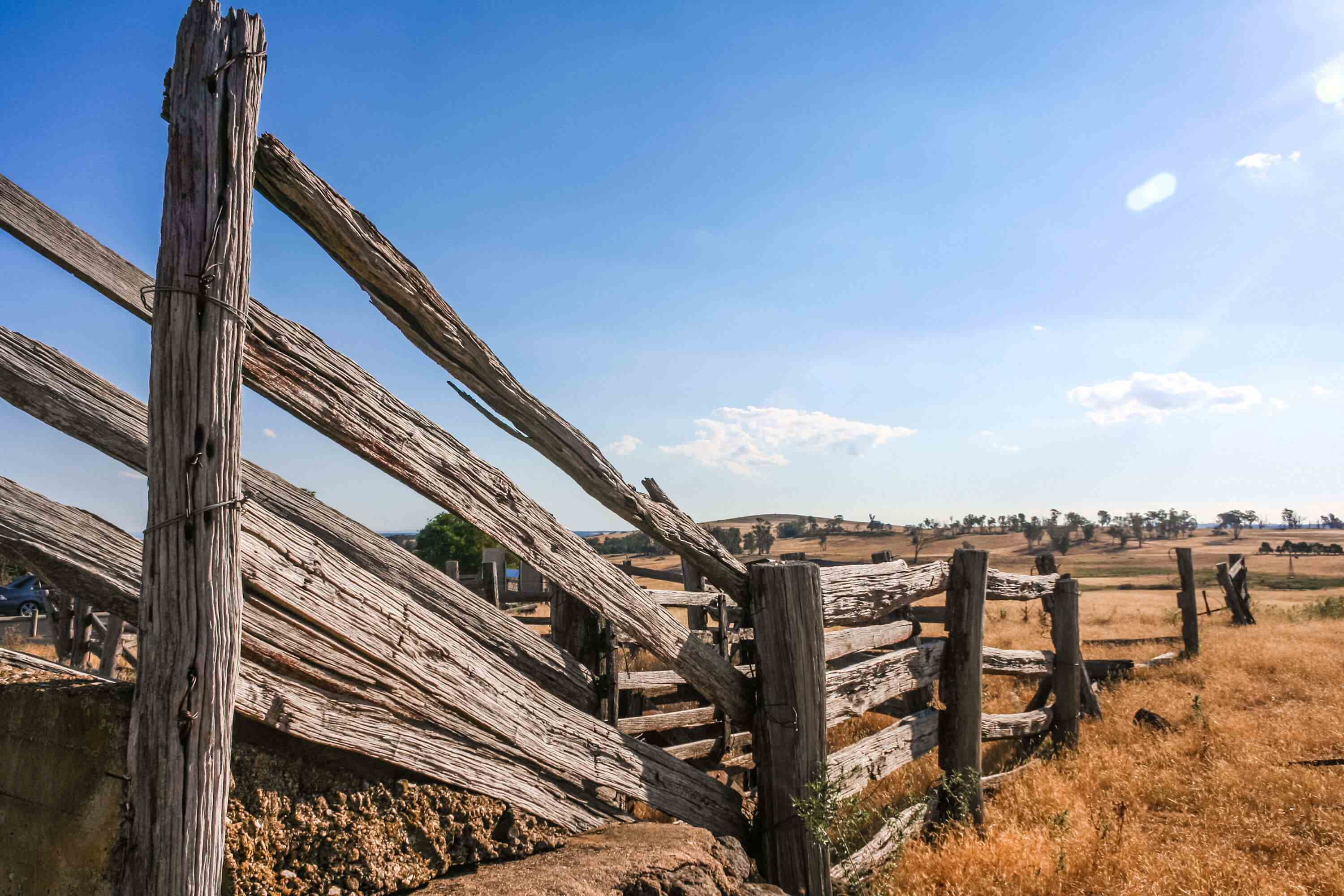 Wood railing and fencing in dry field with some trees in the distance