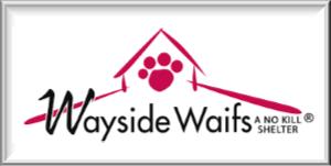 WEB Wayside Waifs.png