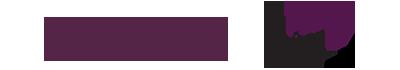 Visser Logo_web.png