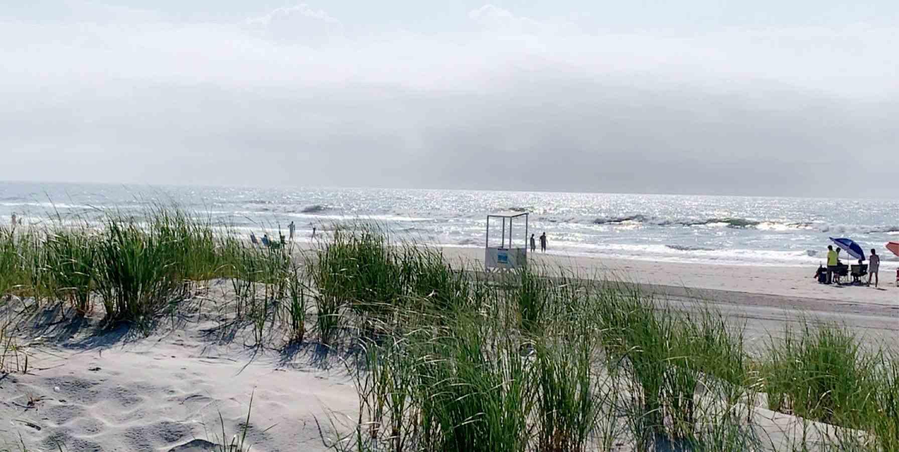 Brigantine Beach with grasses.JPG