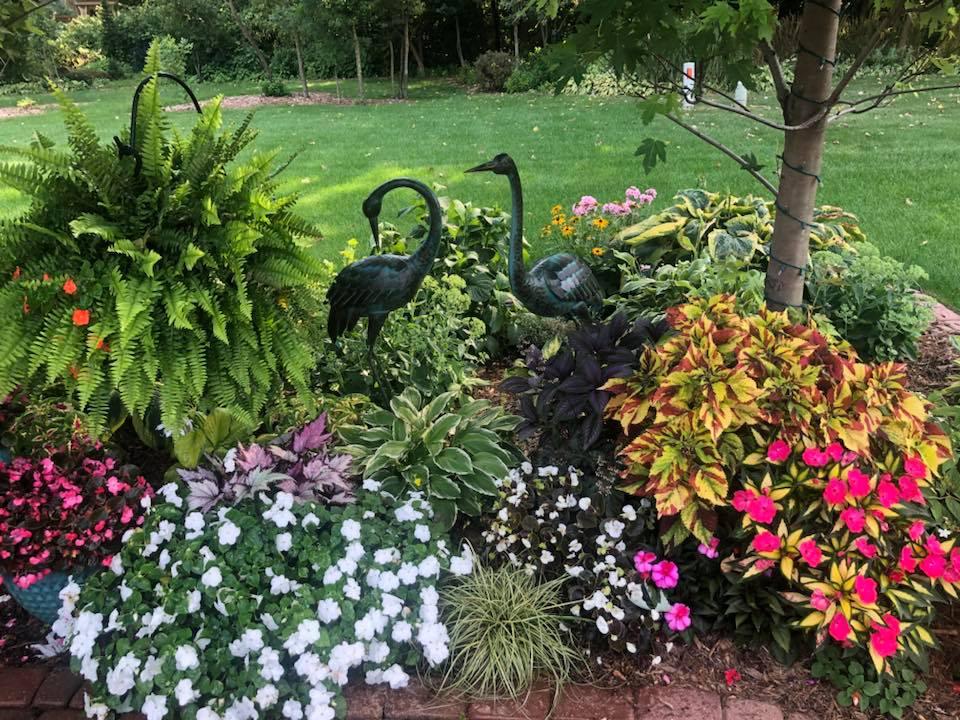 Rachel Port, Lake County Indiana Garden Walk 2020