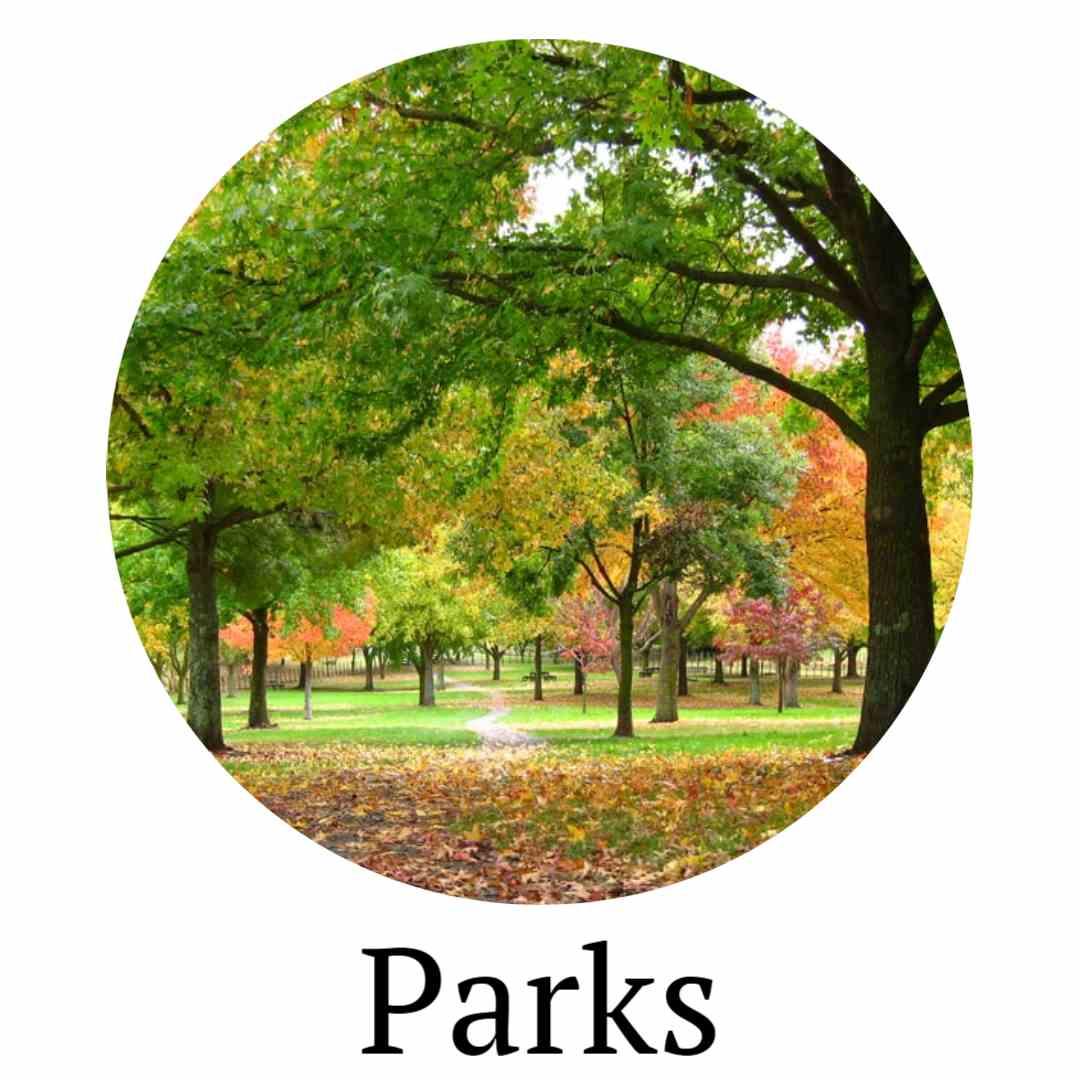 Parks Circle (1).jpg