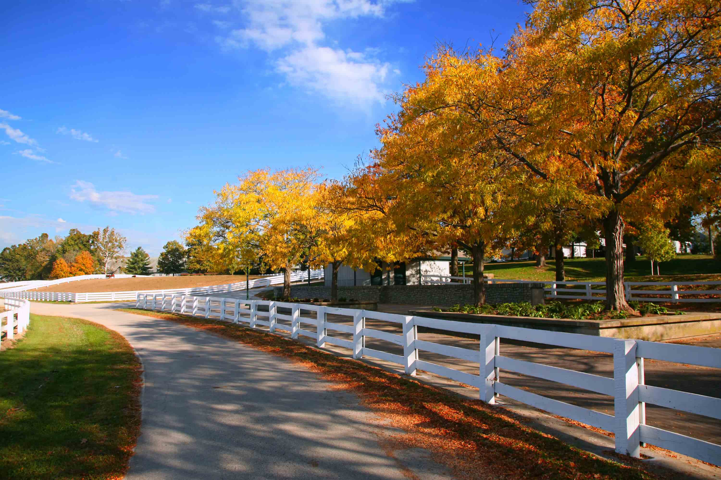 White fence along path with white farm building and multi colored trees