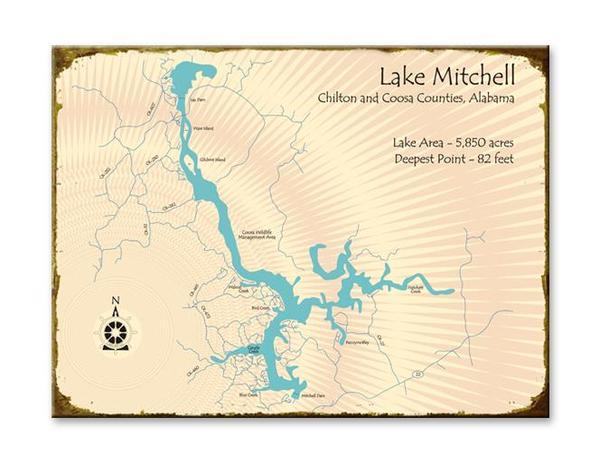 lake mitchell image.jpg