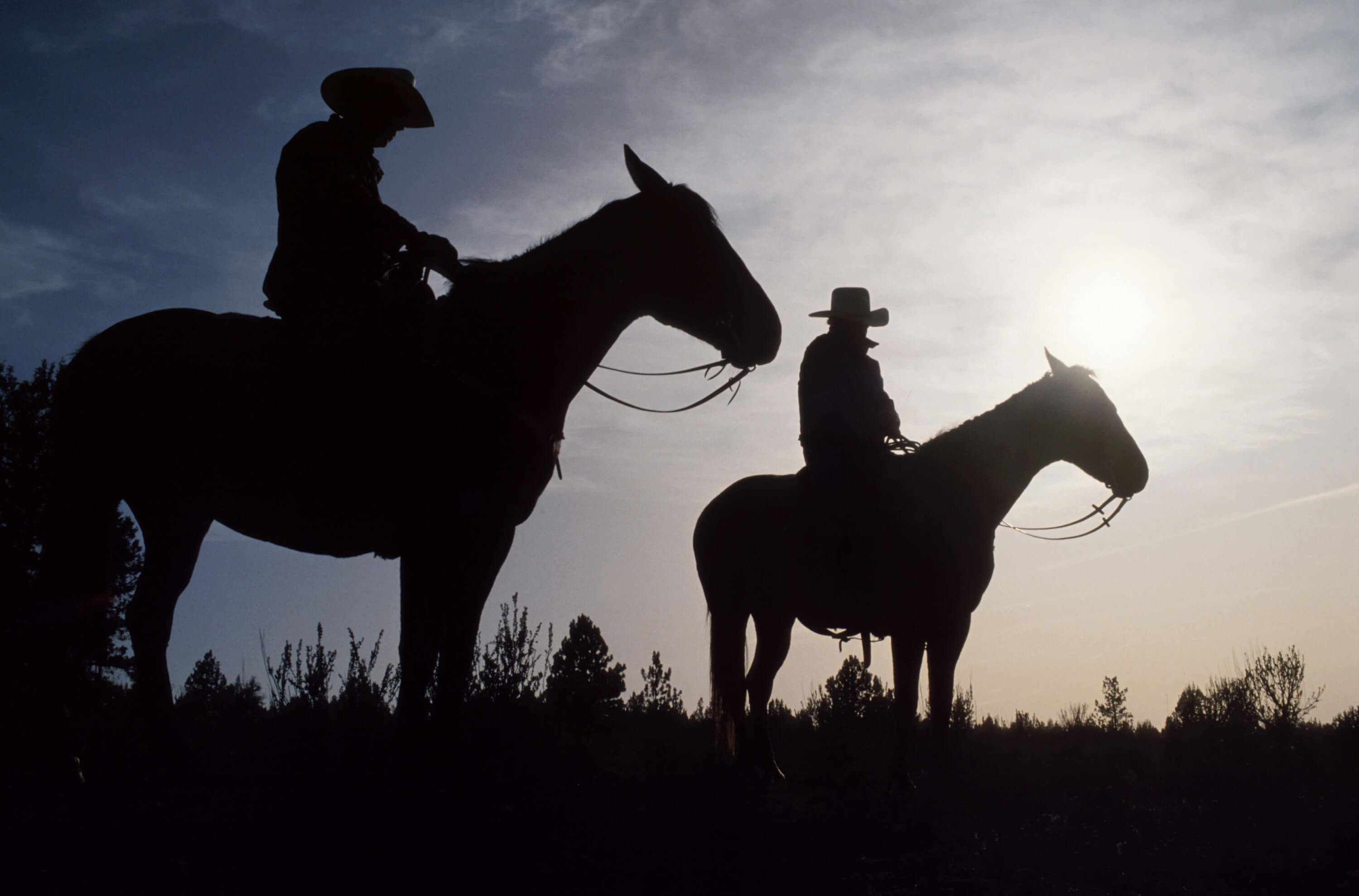 Shadow of two men on horses wearing cowboy hats
