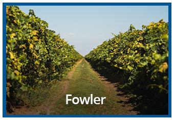 Fowler.jpg