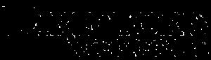Directors Choice - logo