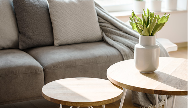 Round modern coffee table with a green plant on top