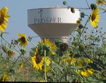 Prosper TX