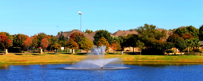 Flower Mound Oaks