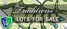 Traditions of Braselton Lots for sale