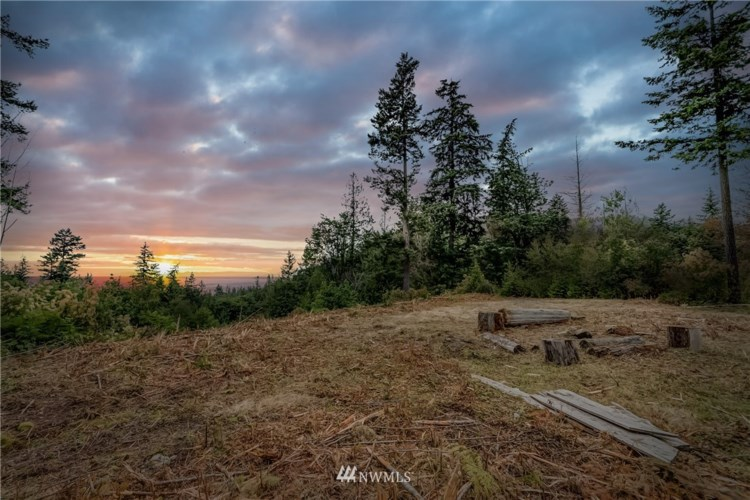 1773 Oyster Creek Lane, Bow, WA 98232