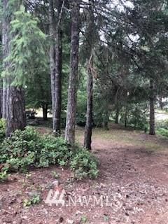 0 Bear Lake Drive SW, Port Orchard, WA 98367