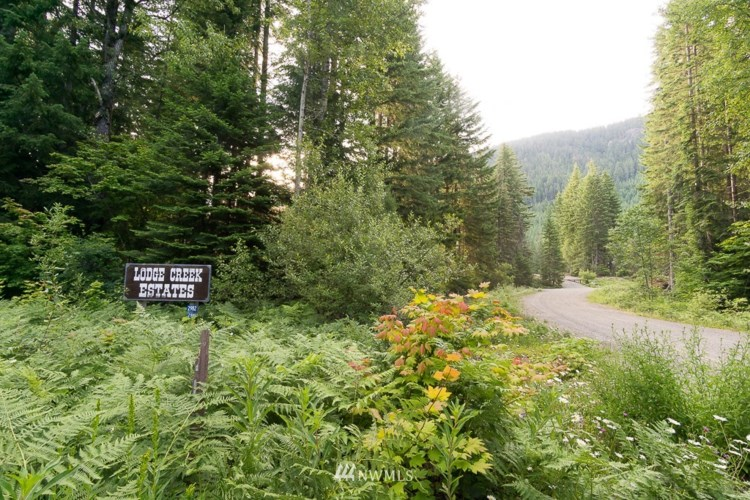 1 Lodge Creek Land, Easton, WA 98925