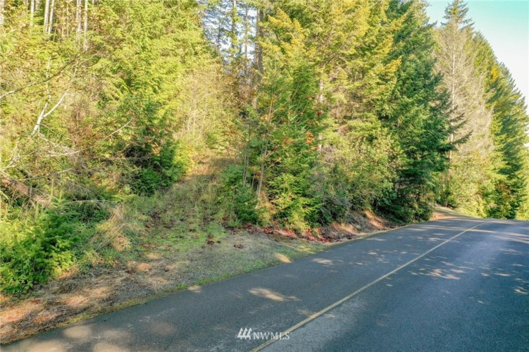 120 N Colony Surf Dr., Lilliwaup, WA 98555