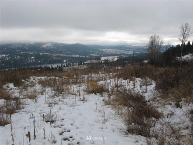 2 Ridge View Drive, Republic, WA 99166