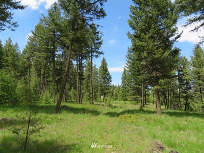 0 Kettle River Road, Curlew, WA 99118