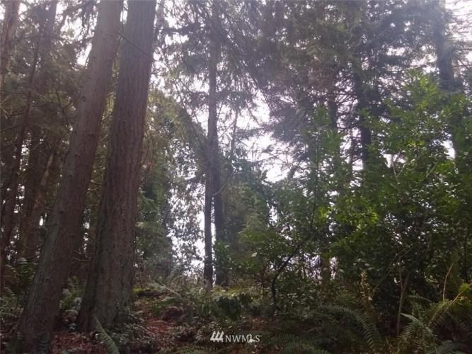 4331 Forest Drive, Everett, WA 98203