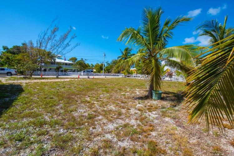 Independence Avenue, Big Pine Key, FL 33043