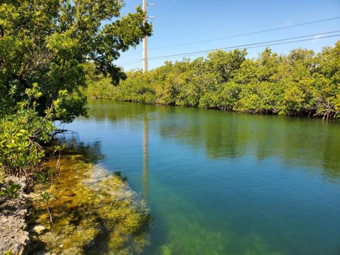 16841 Driftwood Lane, Sugarloaf Key, FL 33042