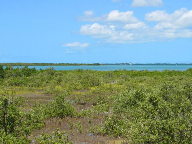 355 Middle Torch Road, Middle Torch Key, FL 33042