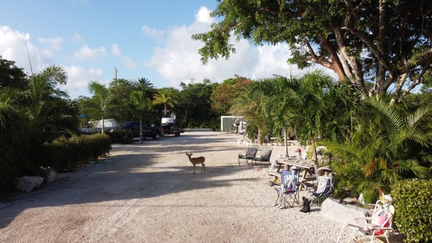 Watson Boulevard, Big Pine Key, FL 33043