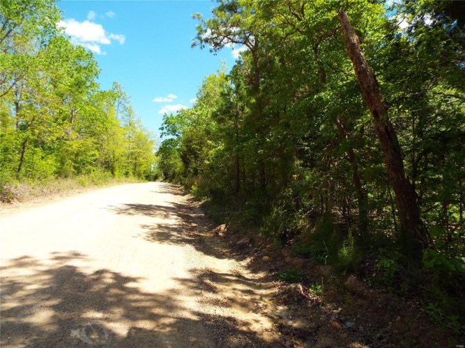443 County Road, Mill Spring, MO 63952