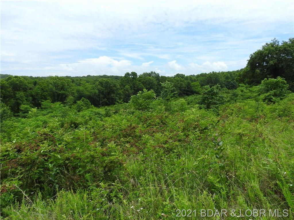 TBD Highway W 333 Acres, Rocky Mount, MO 65072