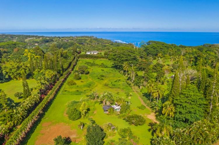 Kahiliholo #B, Kilauea, HI 96754