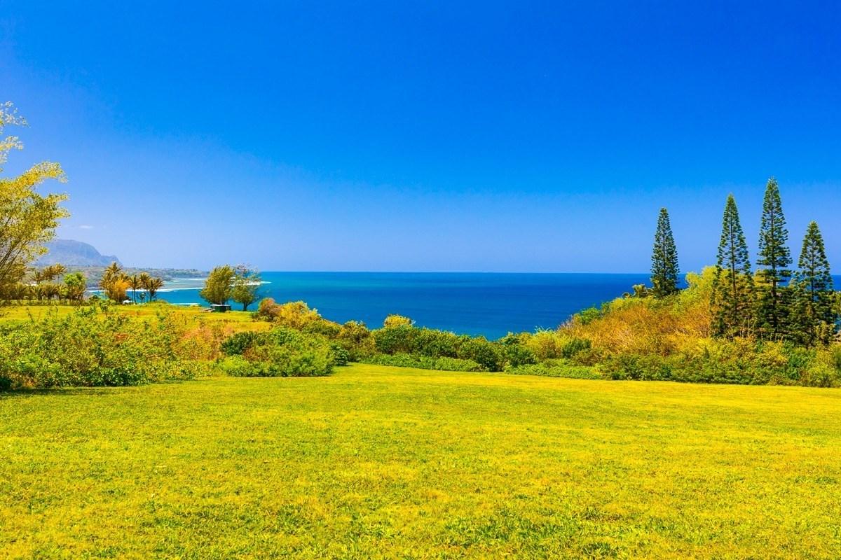 3700  KILAUEA RD, Kilauea, HI 96754